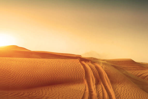 Desert sand dunes road at sunset stock photo