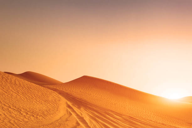 desert sand dunes road at sunset - north africa stock photos and pictures