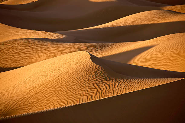 desert sand dunes with shadows - sand dune stock photos and pictures