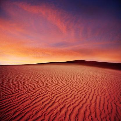 rippled desert sand dunes at sunset, square frame (XL)