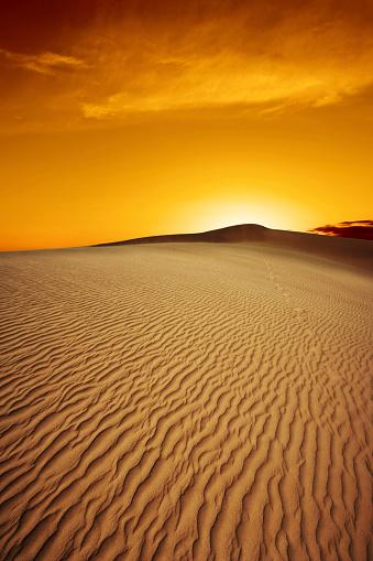 rippled desert sand dunes at sunset, vertical frame (XL)