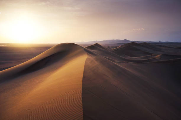 Desert sand sunset stock photo