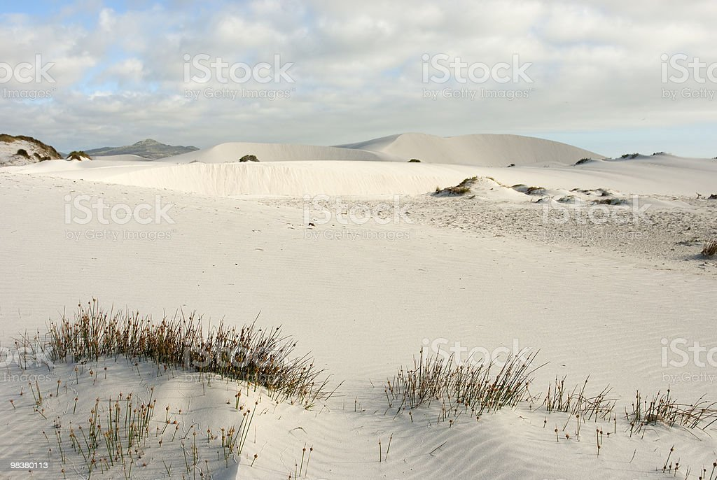 Desert scene with blue skies overhead royalty-free stock photo