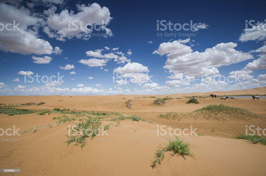 desert scenery stock photo