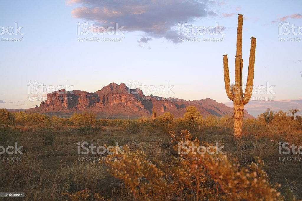 Desert Scenic royalty-free stock photo