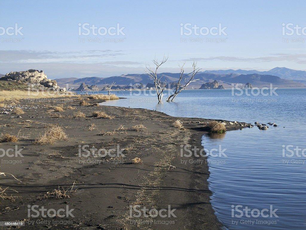 Desert Shoreline stock photo