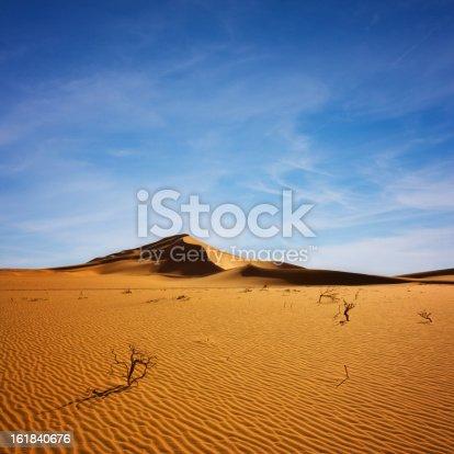 http://www.85millimeter.de/Lightbox/desert.jpg