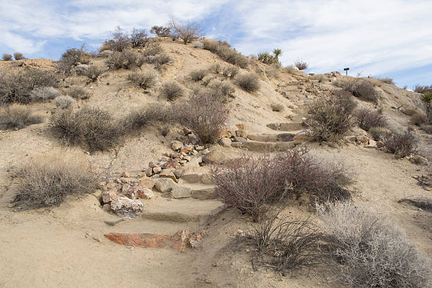 Desert Steps stock photo