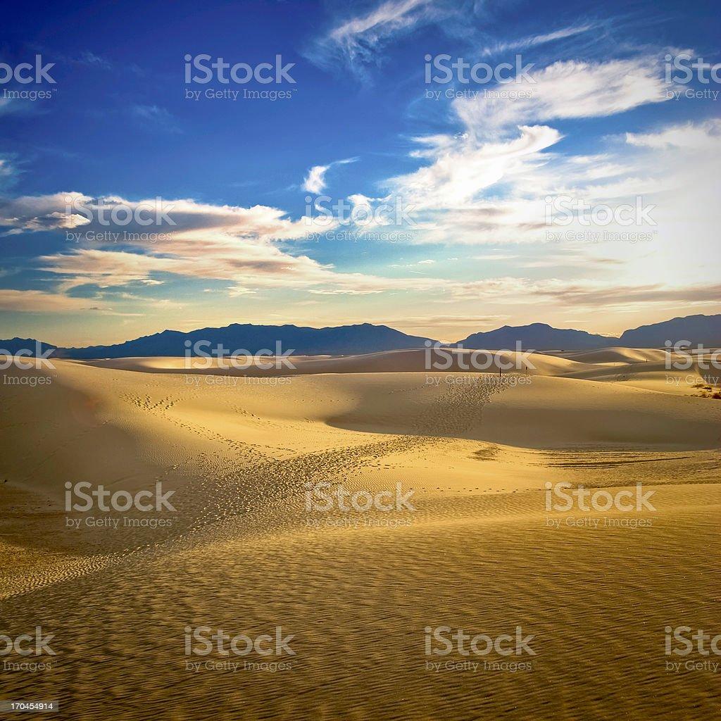 Desert Sun Light royalty-free stock photo