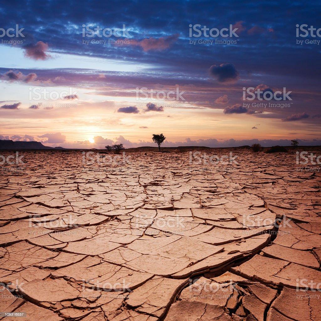 Desert Sun royalty-free stock photo