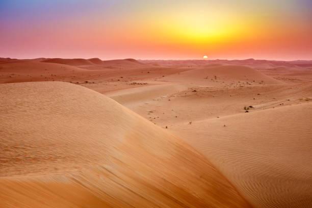 desert sunrise - заповедник дикой природы стоковые фото и изображения