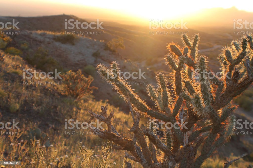 Desert Sunset 2 stock photo