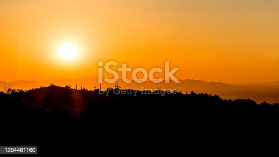 silhouette of a desert landscape against a sunset