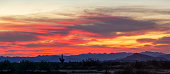 A desert sunset panorama with a saguaro cactus silhouetted against the evening sky in the Sonoran Desert of Arizona.