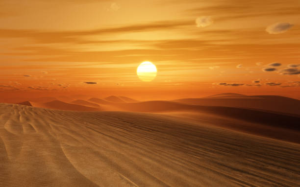 desert sunset - desert stock pictures, royalty-free photos & images
