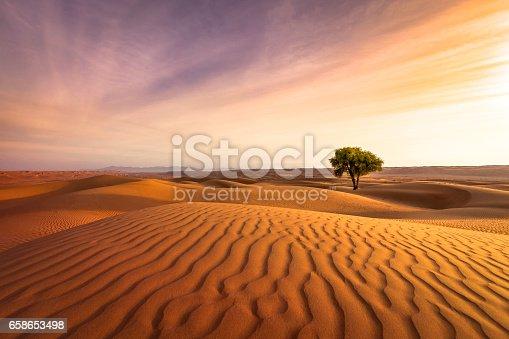 istock desert sunset 658653498