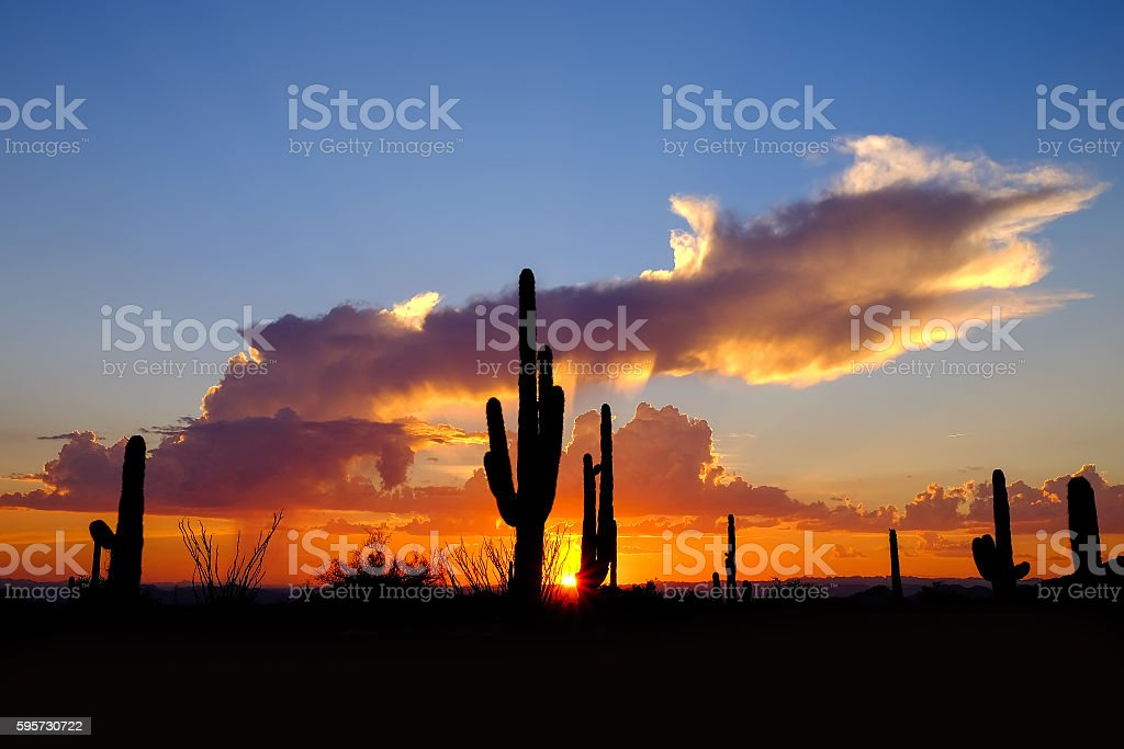 Desert Sunset-Tonto National Forest. stock photo