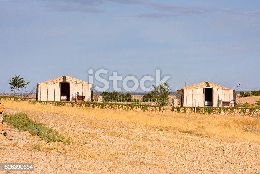Desert Terre des Etoiles, Morocco