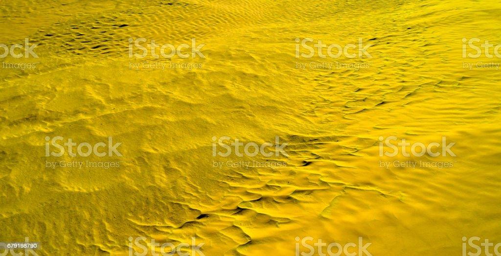 Desert texture in yellow-green color foto de stock royalty-free