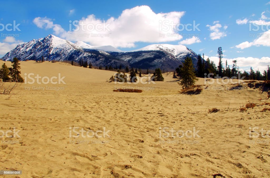 Desert to Mountain stock photo