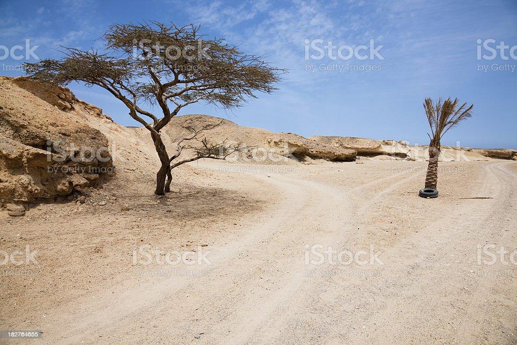 Desert track royalty-free stock photo