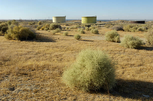 Desert Tumbleweed with Oil Well Storage Tanks in the Background stock photo