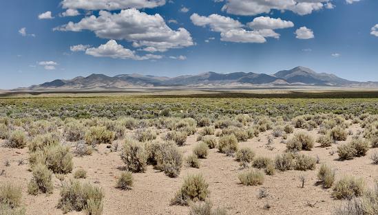 Fletcher Valley and the Wassuk Range in Mineral County, Nevada. Sagebrush scrub vegetation.