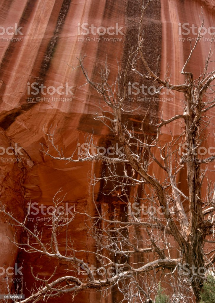 Desert Varnish  on Sandstone Cliffs, Grand Staircase Escalante stock photo