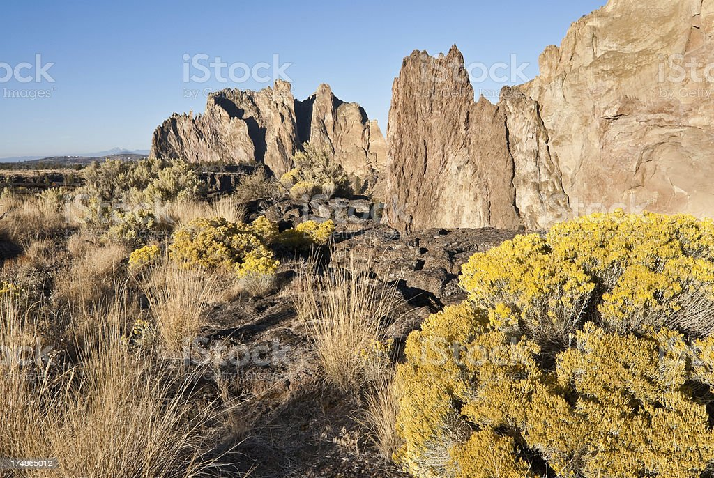 Desert Vegetation at Smith Rock royalty-free stock photo