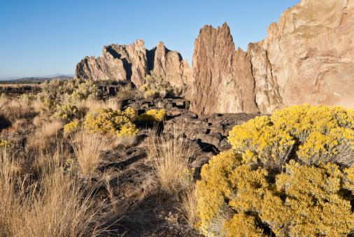 Desert Vegetation At Smith Rock Stock Photo - Download Image Now