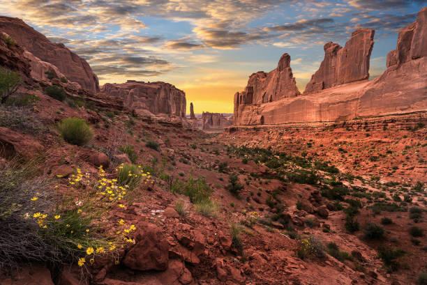 Desert view sunset stock photo
