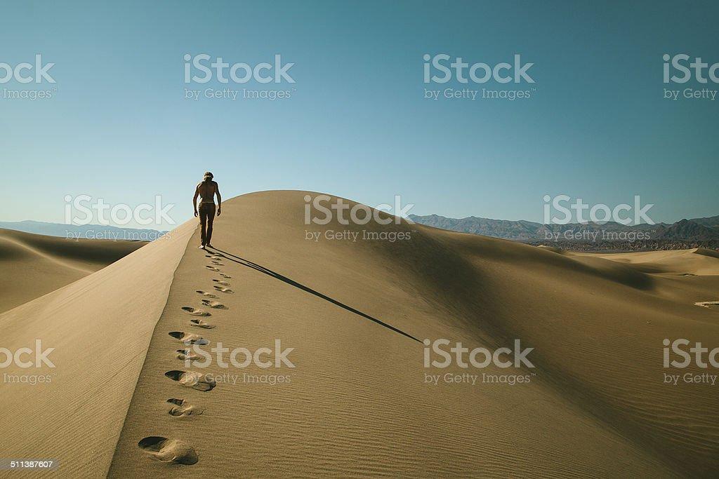 Desert Walker stock photo