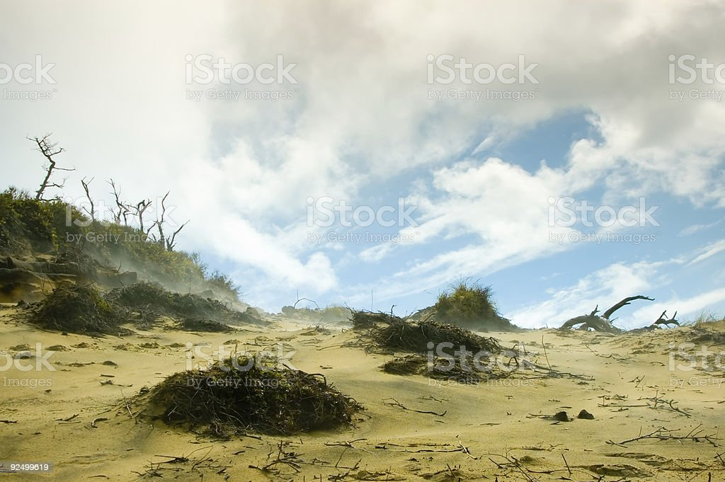 Desert Wasteland royalty-free stock photo