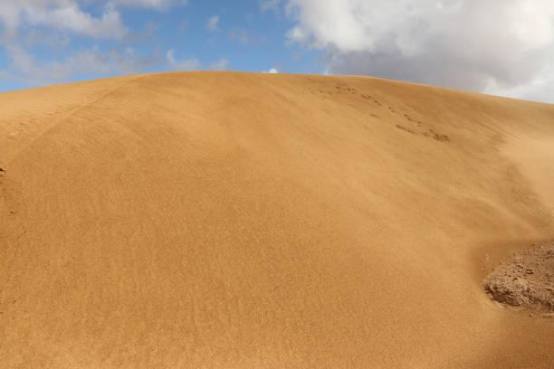 Desert, Western Sahara stock photo