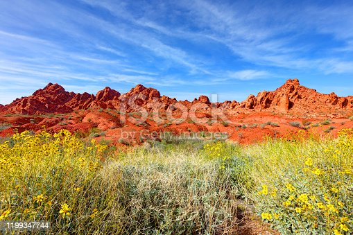 The Valley of Fire is a brilliant, colorful spot located in Nevada, just one hour from Las Vegas.