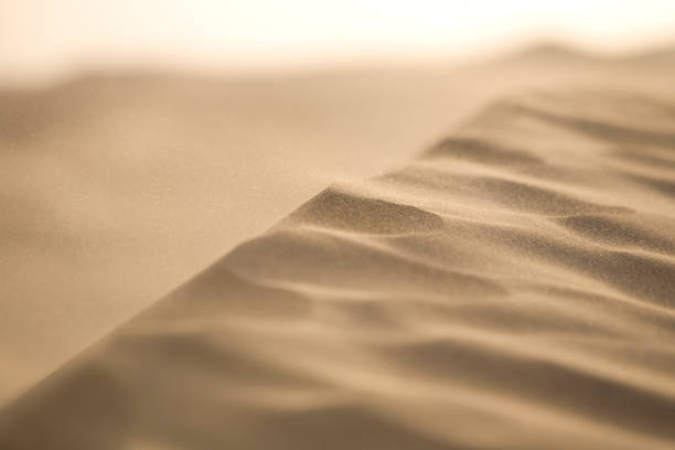 Desert Winds stock photo