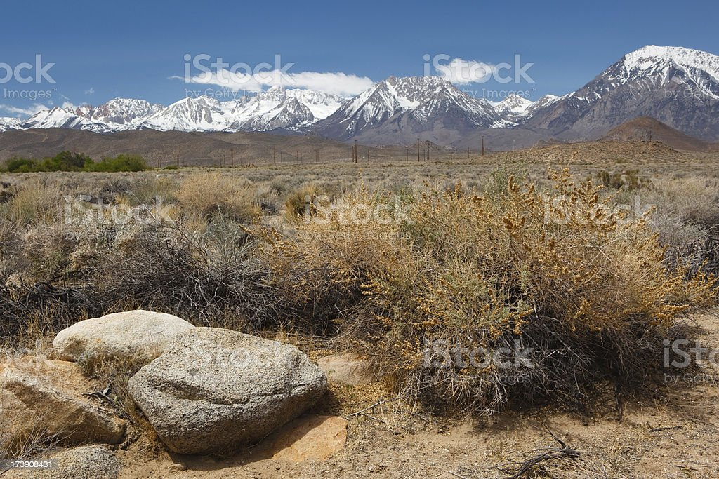 desert with snow capped mountains in background royalty-free stock photo