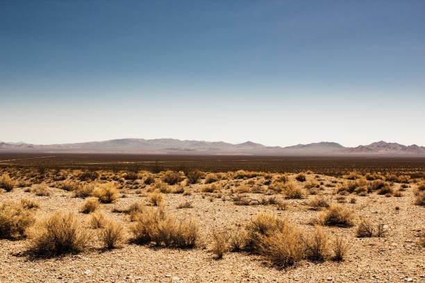 valle de la muerte de menschenleer en der wüste - desierto fotografías e imágenes de stock