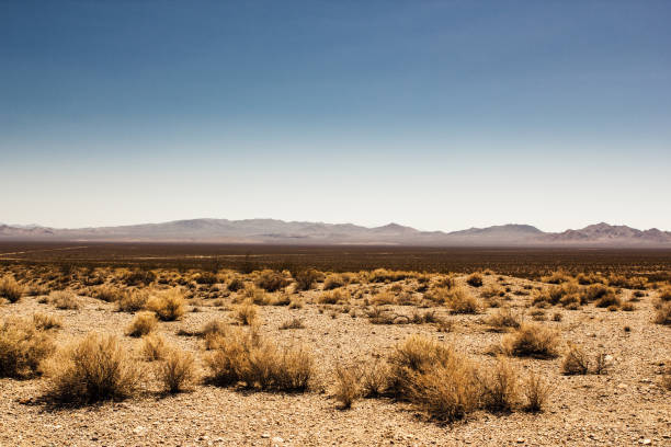 menschenleer death valley in der wüste - horizontal stock-fotos und bilder