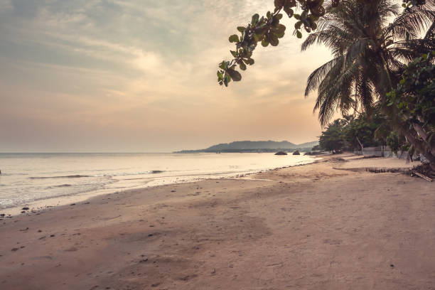 deserted tropical beach landscape during sunset with beautiful scenic view on sea and coastline with palm trees and sunset sky - desert island stock photos and pictures