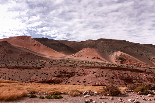 Desertic landscape with mountains and geological formations from Argentina