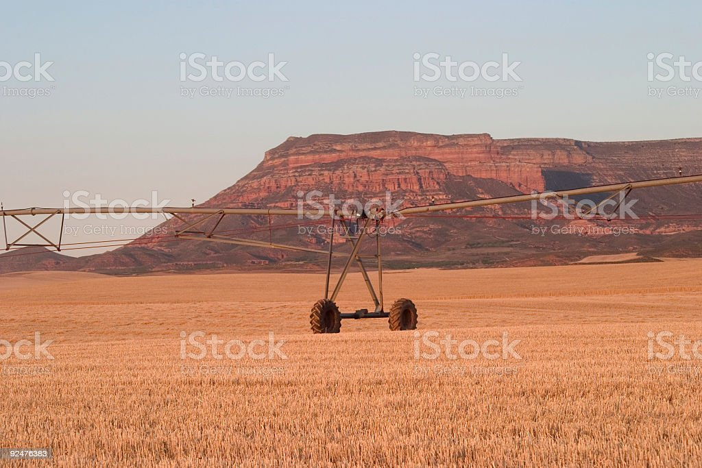 Desertification problems royalty-free stock photo