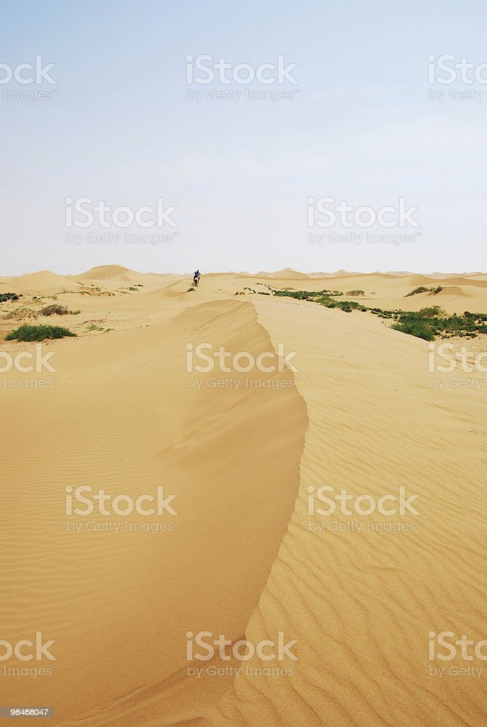 desert-oasis-camel-people royalty-free stock photo
