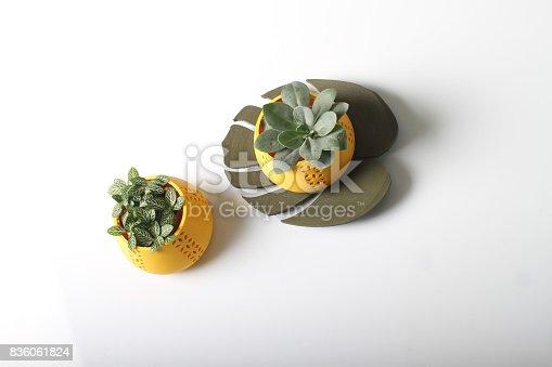 istock Design Flower pots 836061824