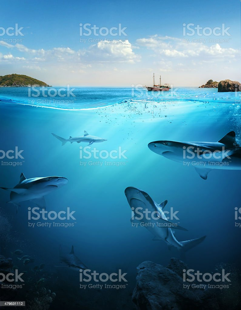 Design template with underwater part stock photo