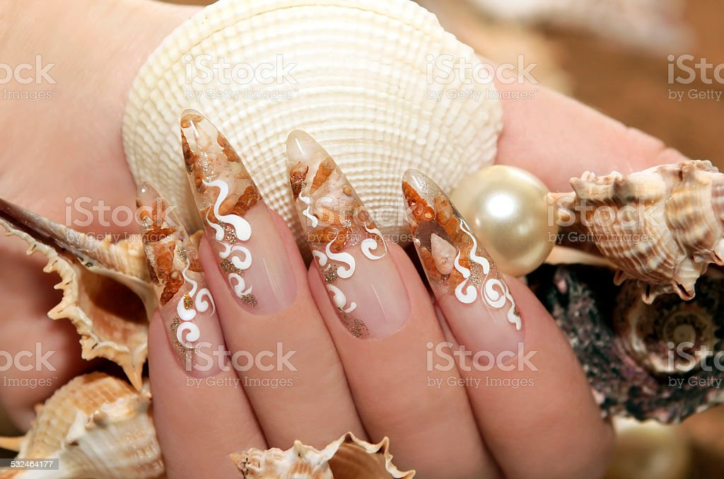 Design with seashells. stock photo