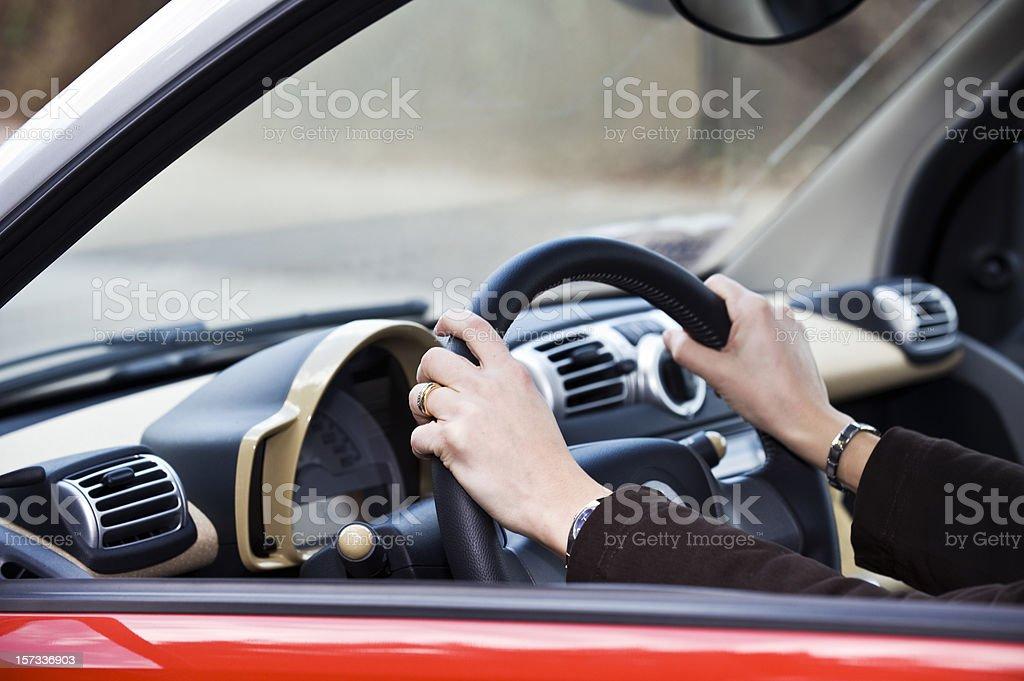 Designated Driver, Color Image stock photo