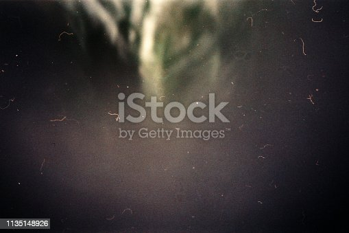 1131841696 istock photo Designed film texture background 1135148926