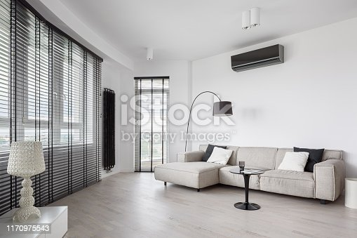 Designed living room interior in black and white with modern furniture