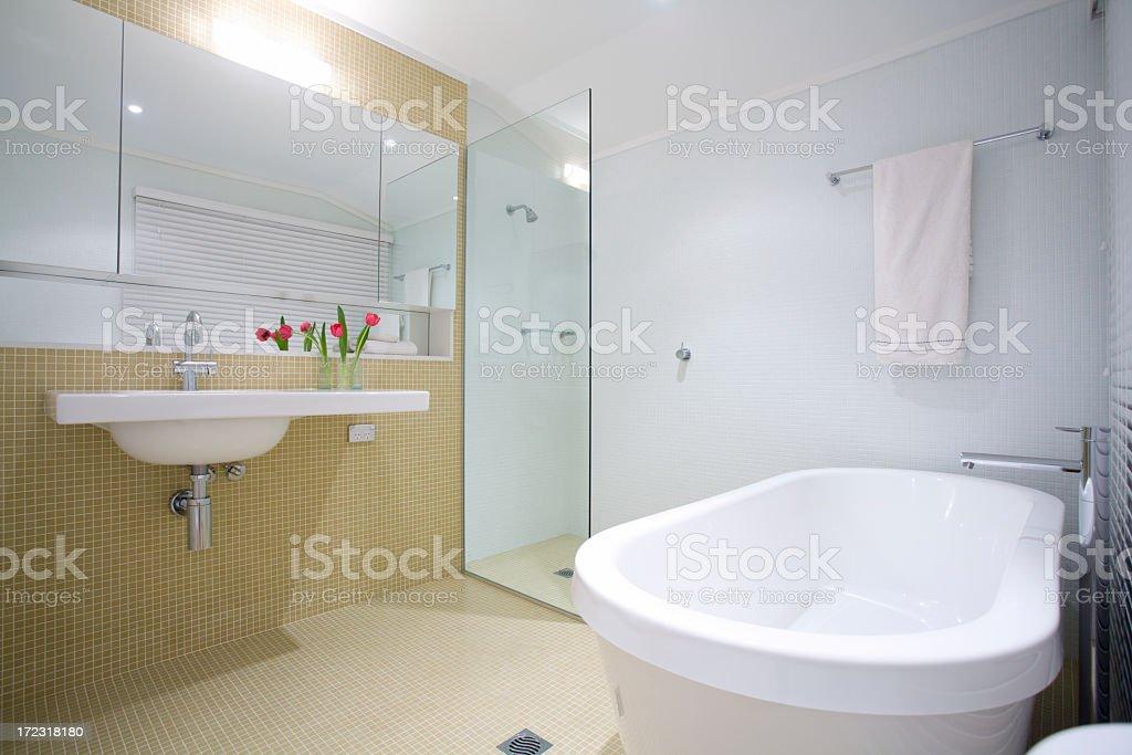 Designer Bathroom 2 royalty-free stock photo
